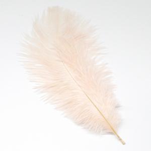 Перо страуса для фото бежевое (1 шт.) 20-25см